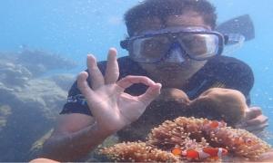 snorkeling-karimunjawa